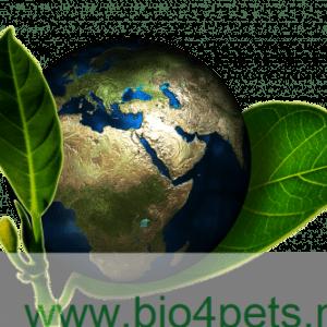 Selectie van Duurzame en/of biologische Cadeautjes!