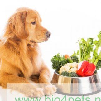 Vegetarisch/Vegan voer en snacks