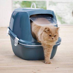 duurzame kattenbakvulling