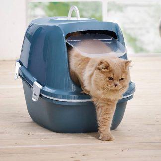 duurzame kattenbakvulling en kattenbakken
