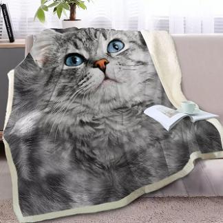 deken-kattenafbeelding-Ragdoll-kat-1