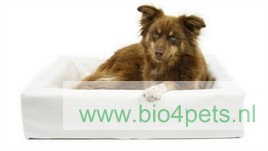 bia-bed-120x100x15-hond-wit