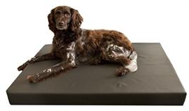 orthopedische hondenbed
