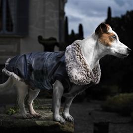 croci-hondenjas-rochester-donkerblauw-met-bontkraag-beige