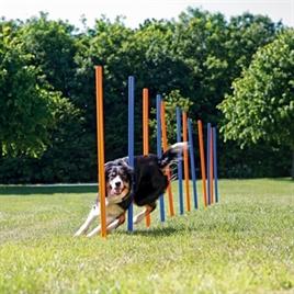 Trixie-Dog-Activity-Agility-Slalom-Blauw-Oranje-115x3 cm-12st