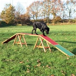 trixie-dog-activity-agility-hondenloop-loopplank-hond-465x64x30cm
